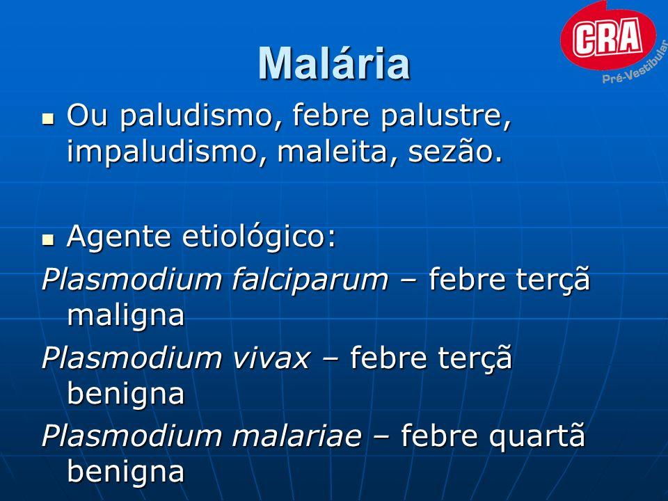 Malária Ou paludismo, febre palustre, impaludismo, maleita, sezão. Ou paludismo, febre palustre, impaludismo, maleita, sezão. Agente etiológico: Agent