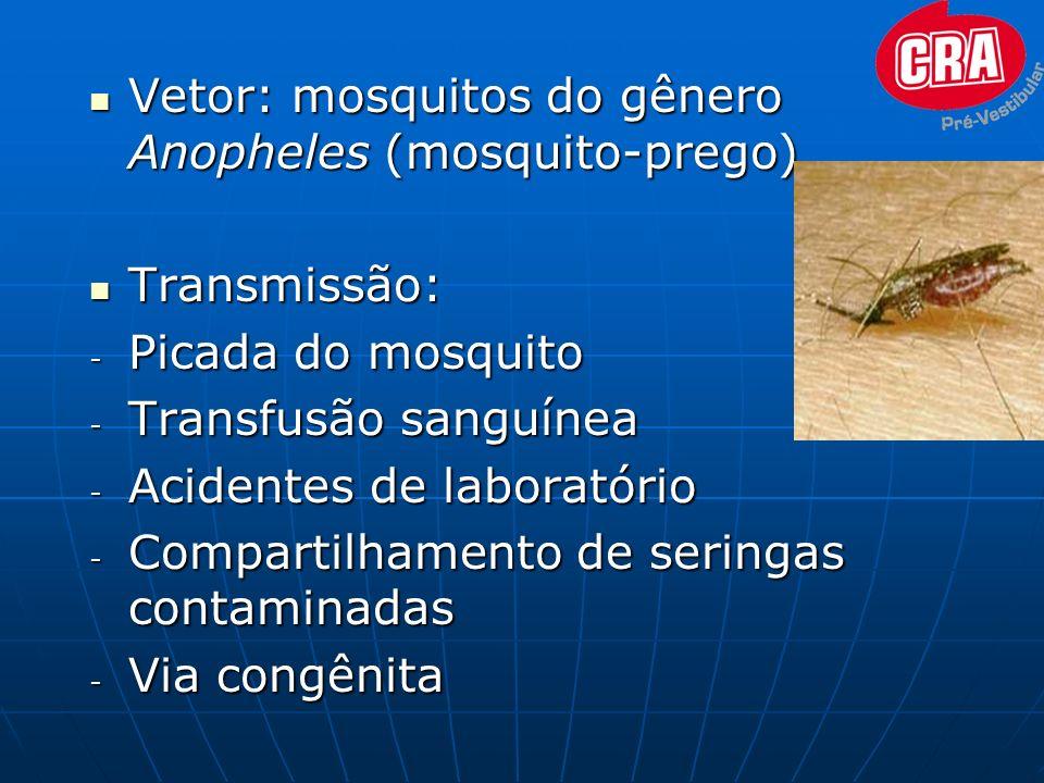 Vetor: mosquitos do gênero Anopheles (mosquito-prego) Vetor: mosquitos do gênero Anopheles (mosquito-prego) Transmissão: Transmissão: - Picada do mosq