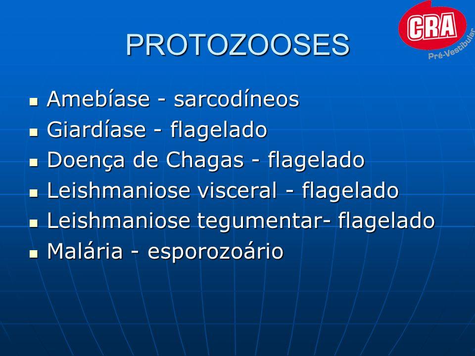 PROTOZOOSES Amebíase Amebíase - sarcodíneos Giardíase Giardíase - flagelado Doença Doença de Chagas - flagelado Leishmaniose Leishmaniose visceral - f