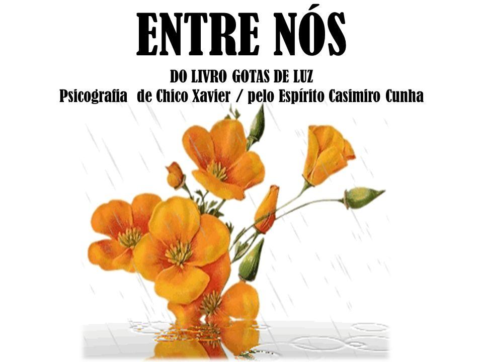 ENTRE NÓS DO LIVRO GOTAS DE LUZ Psicografia de Chico Xavier / pelo Espírito Casimiro Cunha