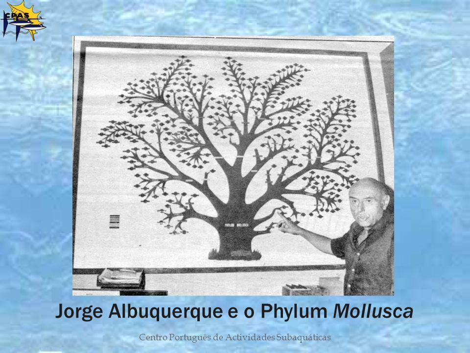 Centro Português de Actividades Subaquáticas Jorge Albuquerque e o Phylum Mollusca