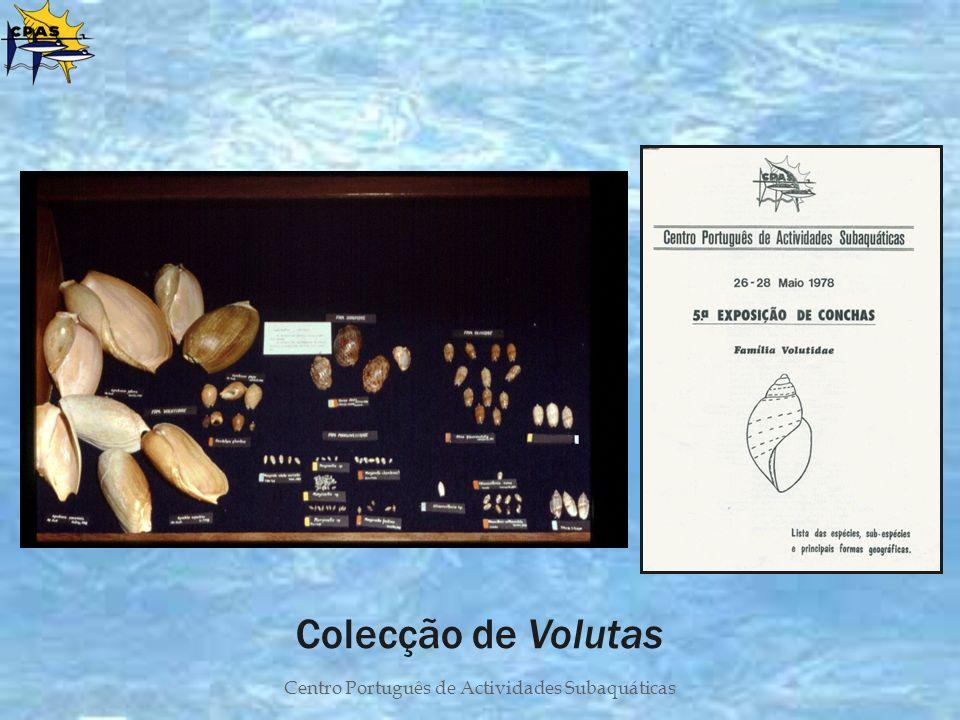 Centro Português de Actividades Subaquáticas Colecção de Volutas