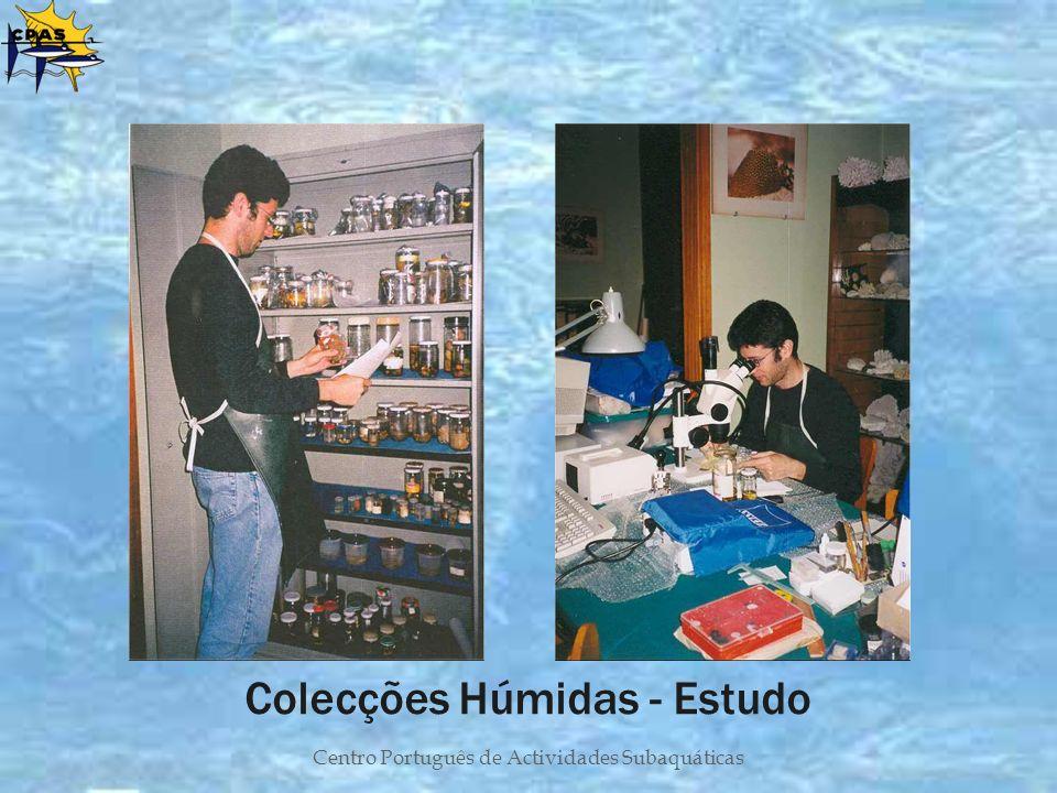 Centro Português de Actividades Subaquáticas Colecções Húmidas - Estudo