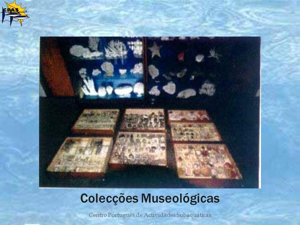 Centro Português de Actividades Subaquáticas Colecções Museológicas