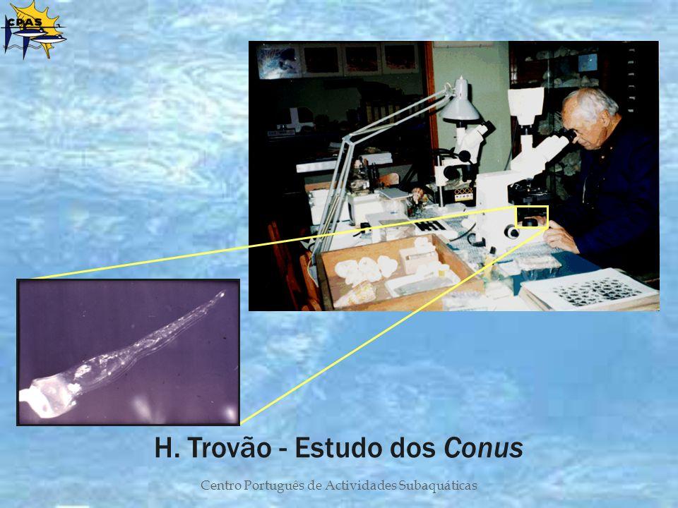 Centro Português de Actividades Subaquáticas H. Trovão - Estudo dos Conus