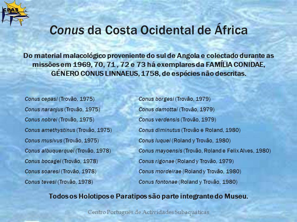 Centro Português de Actividades Subaquáticas Conus da Costa Ocidental de África Do material malacológico proveniente do sul de Angola e colectado dura