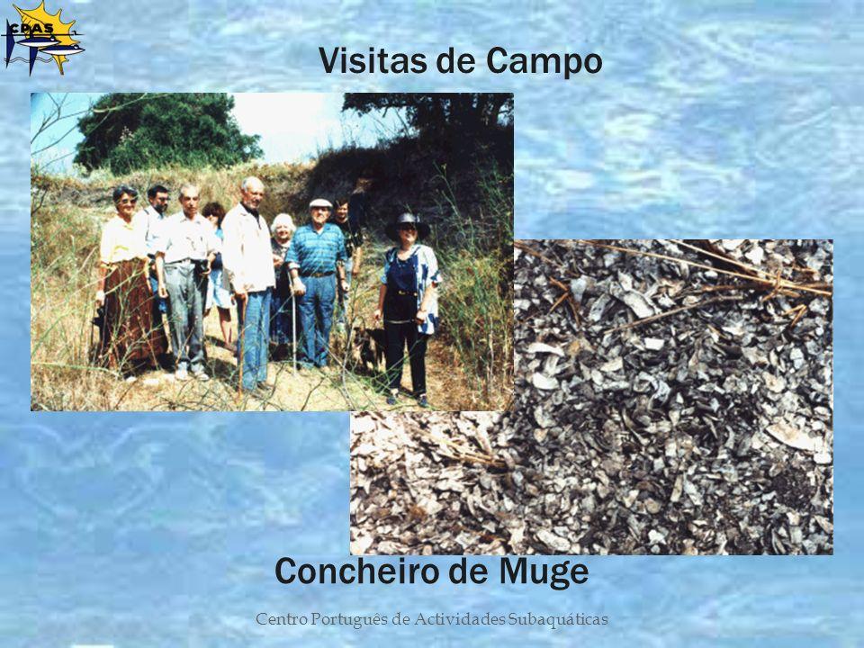 Centro Português de Actividades Subaquáticas Concheiro de Muge Visitas de Campo