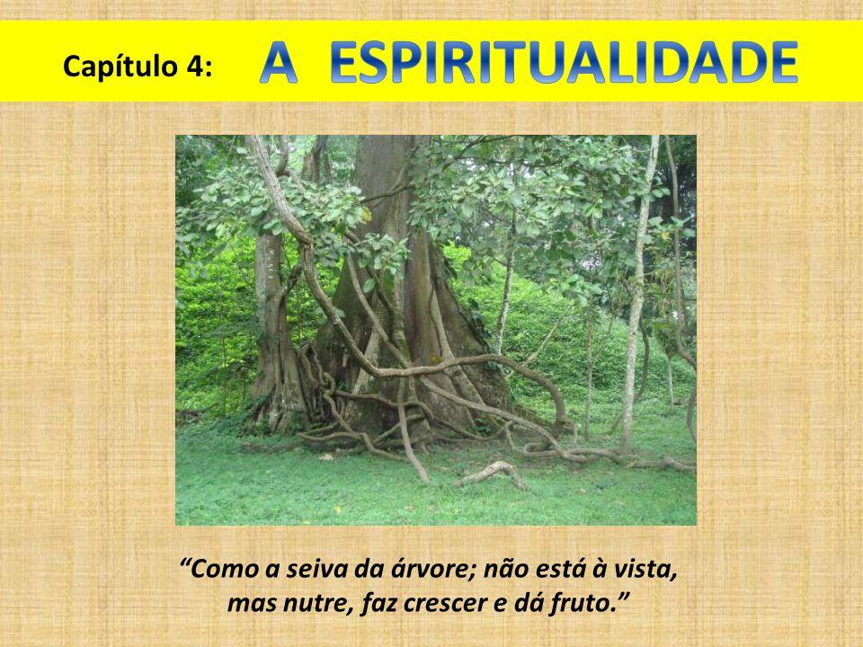 Capítulo 4: Como a seiva da árvore; não está à vista, mas nutre, faz crescer e dá fruto.