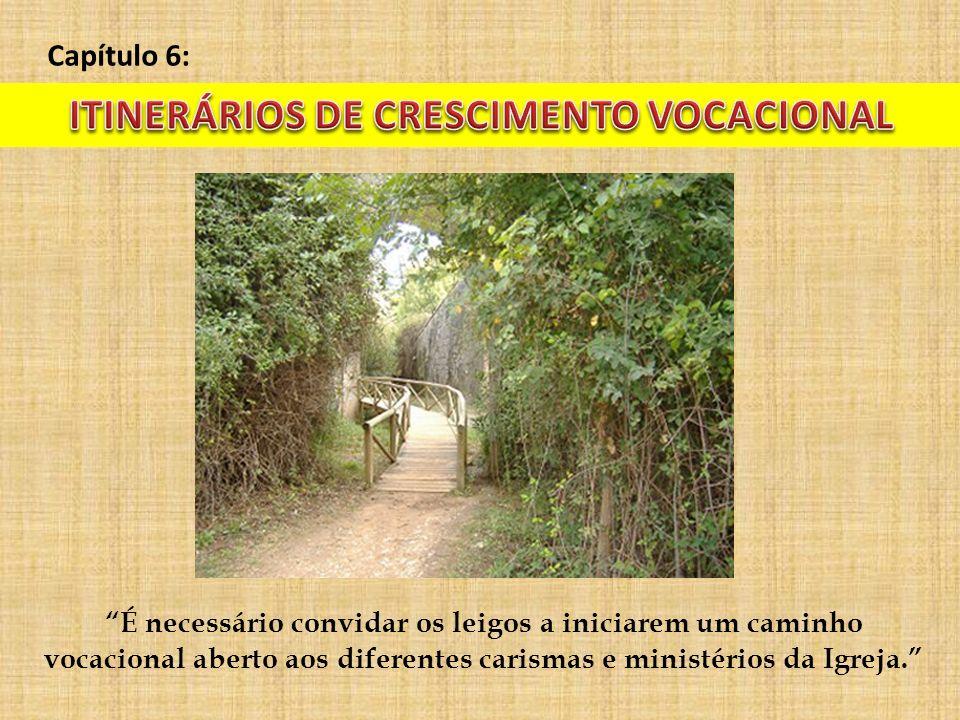 Capítulo 6: É necessário convidar os leigos a iniciarem um caminho vocacional aberto aos diferentes carismas e ministérios da Igreja.