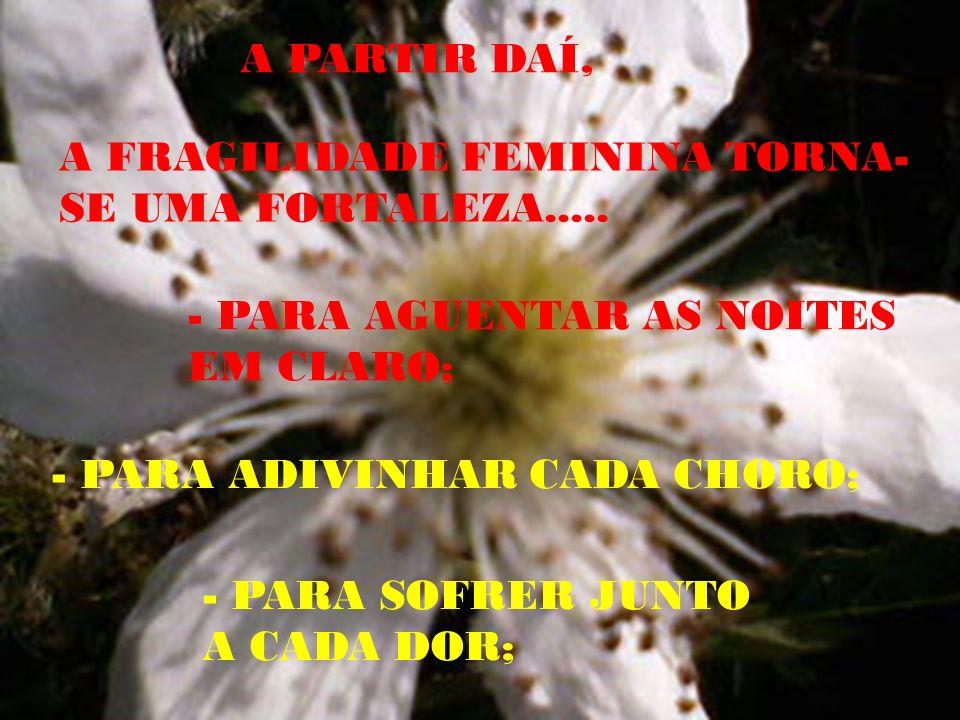 A PARTIR DAÍ, A FRAGILIDADE FEMININA TORNA- SE UMA FORTALEZA.....
