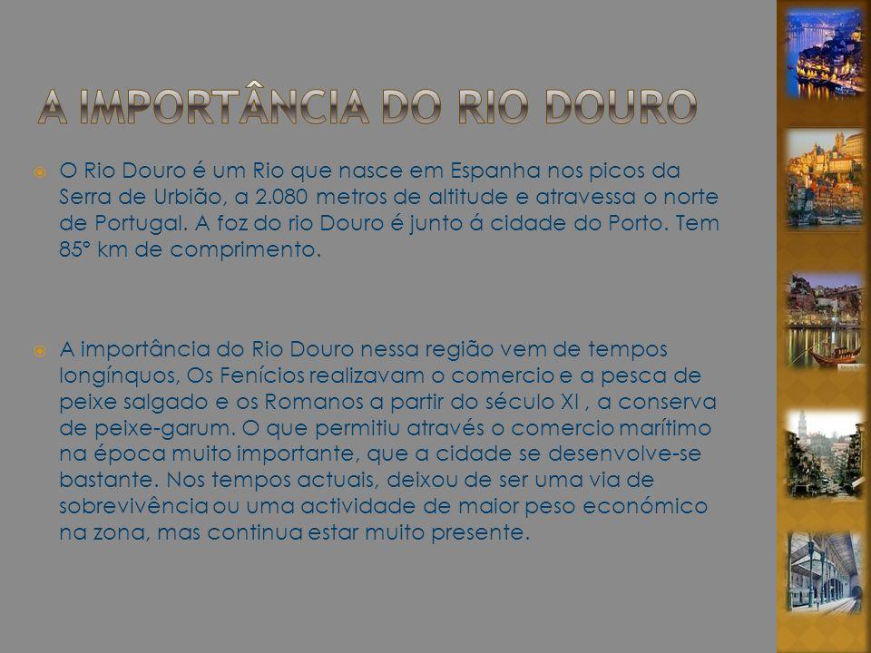O Rio Douro é um Rio que nasce em Espanha nos picos da Serra de Urbião, a 2.080 metros de altitude e atravessa o norte de Portugal. A foz do rio Douro