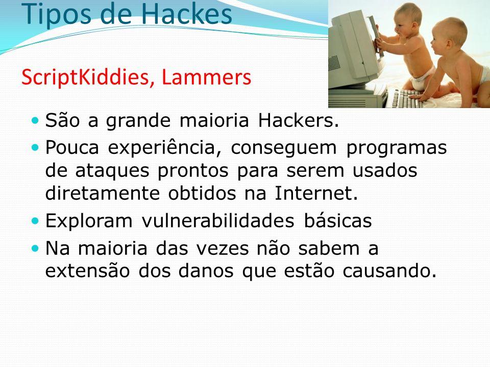 Tipos de Hackes CyberPunks São os Hackers dos velhos tempos Invadem sistemas motivados por puro divertimento e desafio Tem grande conhecimento de protocolos e atuam contra os Governos, principalmente o Norte Americano São os mais paranóicos e costumam acreditar em teorias da conspiração Atuam muito em pesquisas e descobrem várias vulnerabilidades Prestando serviços à indústria