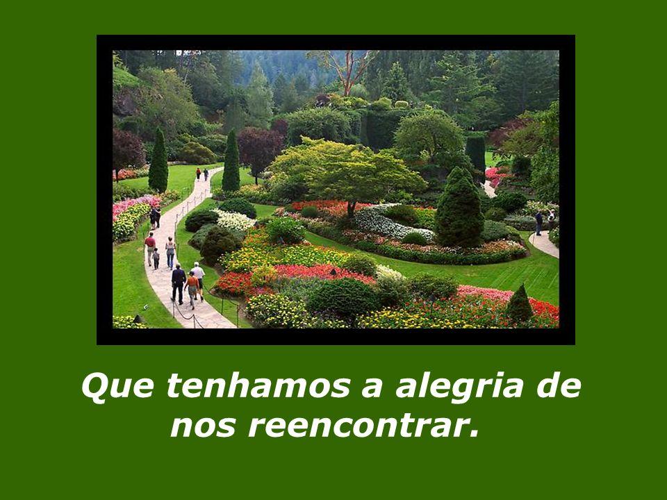 Senhor, nosso Deus, Tu, nosso farol, vela ainda sobre nós quando retomar-mos o caminho de regresso.