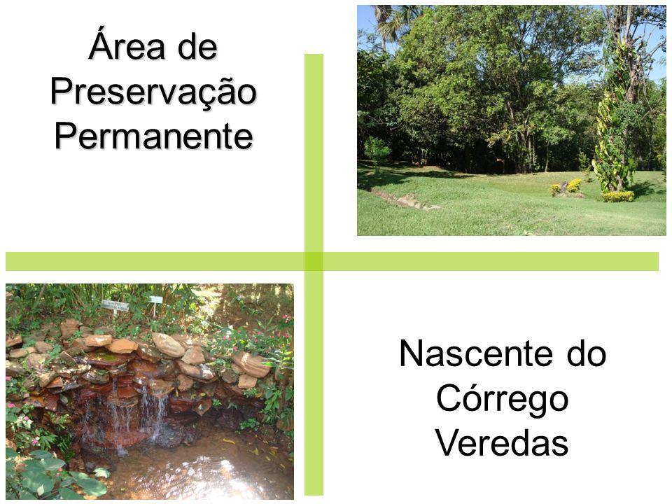 Área de Preservação Permanente Nascente do Córrego Veredas
