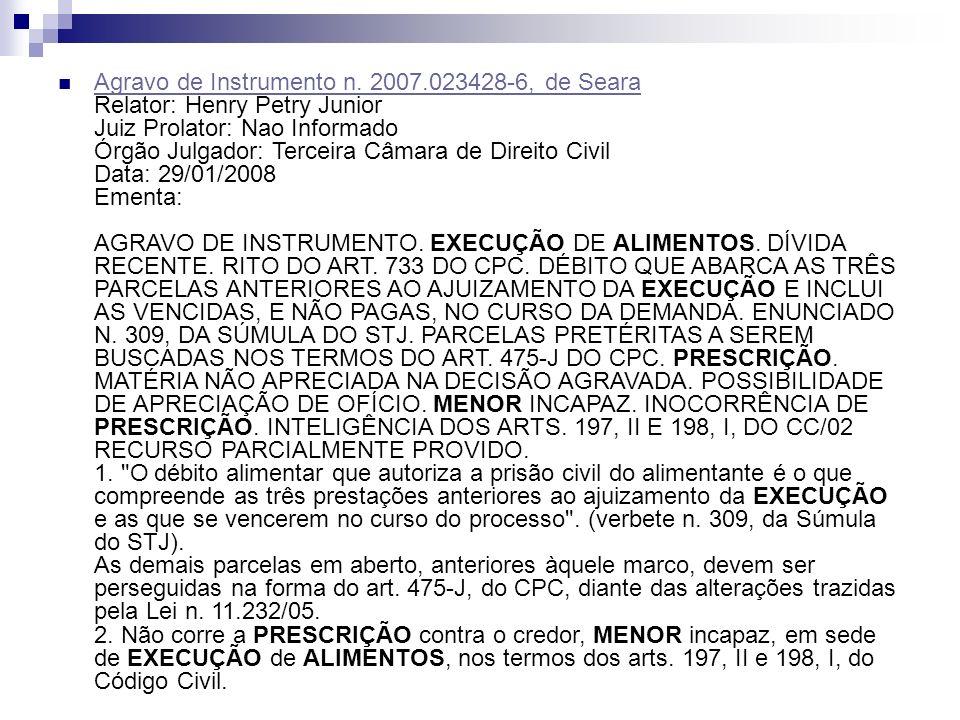 Agravo de Instrumento n. 2007.023428-6, de Seara Relator: Henry Petry Junior Juiz Prolator: Nao Informado Órgão Julgador: Terceira Câmara de Direito C
