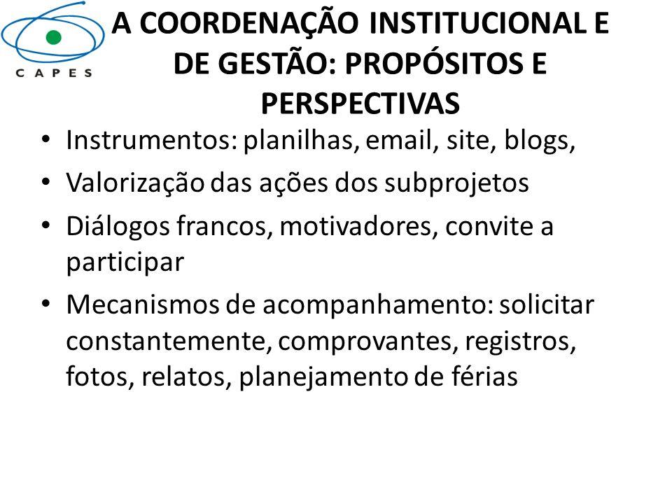 A COORDENAÇÃO INSTITUCIONAL E DE GESTÃO: PROPÓSITOS E PERSPECTIVAS Instrumentos: planilhas, email, site, blogs, Valorização das ações dos subprojetos