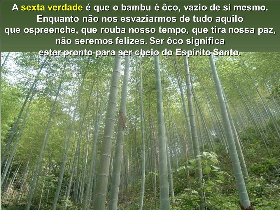 A quinta verdade é que o bambu é cheio de nós (e não de eus). Como ele é ôco, sabe que se crescesse sem nós seria muito fraco. Os nós são os problemas