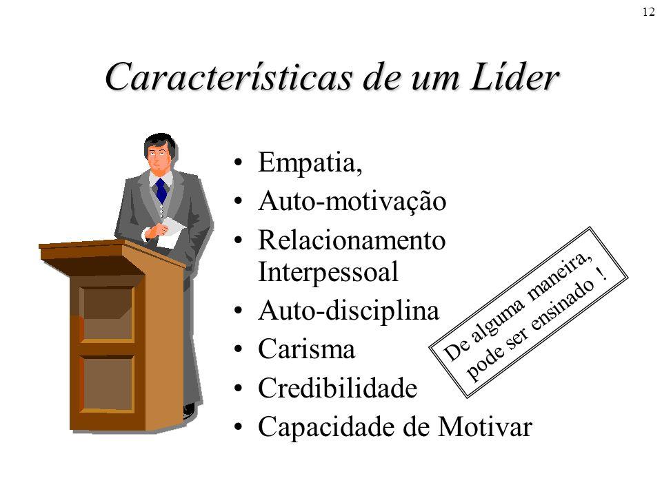 12 Características de um Líder Empatia, Auto-motivação Relacionamento Interpessoal Auto-disciplina Carisma Credibilidade Capacidade de Motivar De algu