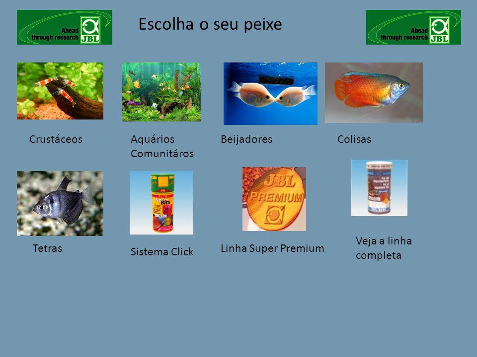 Escolha o seu peixe CrustáceosAquários Comunitáros Veja a linha completa BeijadoresColisas TetrasLinha Super Premium Sistema Click