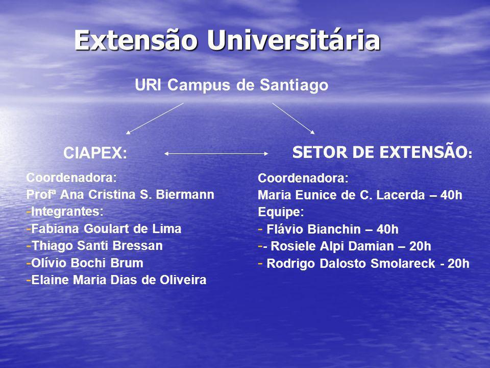 Extensão Universitária Coordenadora: Profª Ana Cristina S. Biermann - - Integrantes: - - Fabiana Goulart de Lima - - Thiago Santi Bressan - - Olívio B