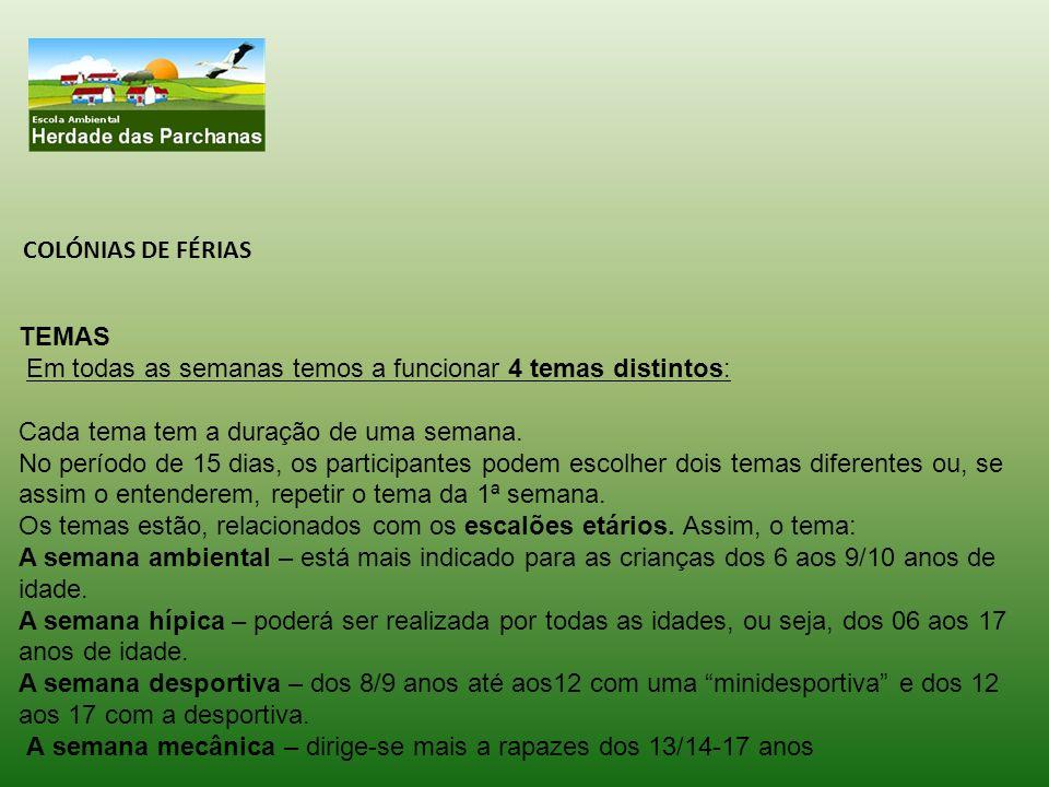 LOCALIZAÇÃO: Praia da Comporta – Carrasqueira Neste ano de 2013, temos uma novidade para lhe oferecer:.