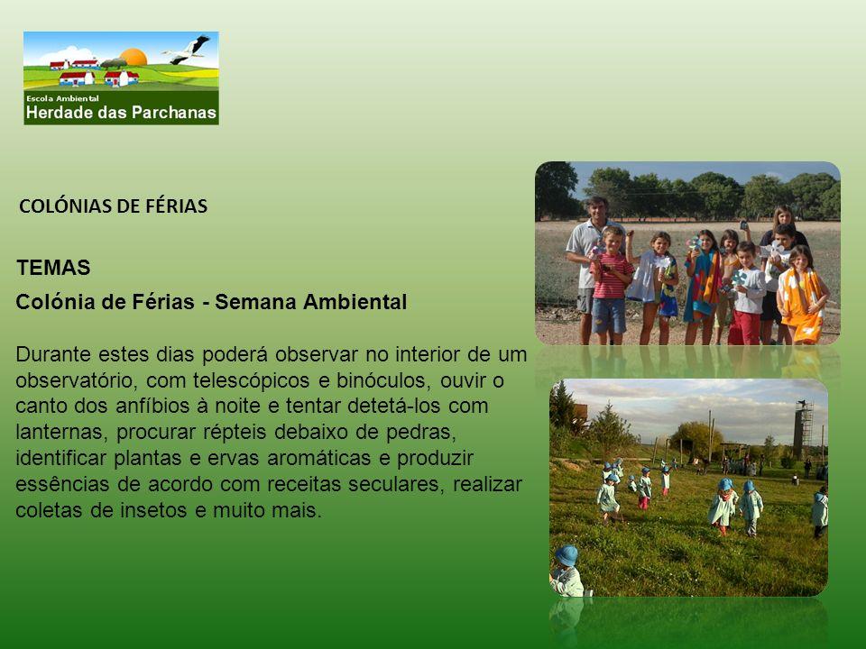 INSTALAÇÕES: Praia da Comporta – Carrasqueira Dispomos de :.