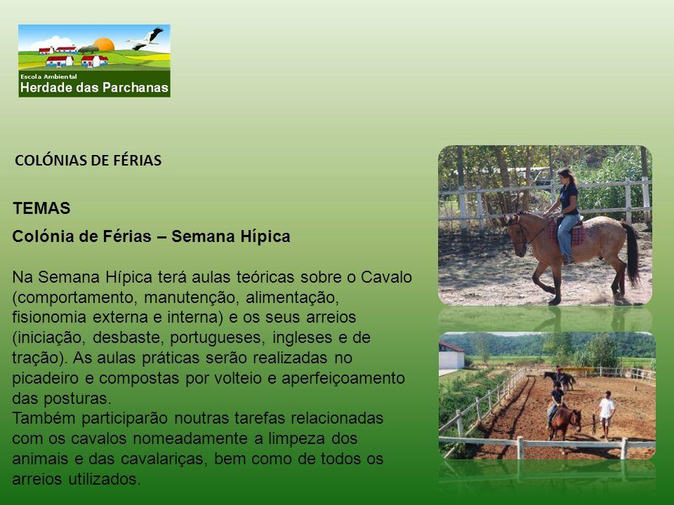 COLÓNIAS DE FÉRIAS TEMAS Colónia de Férias – Semana Hípica Na Semana Hípica terá aulas teóricas sobre o Cavalo (comportamento, manutenção, alimentação