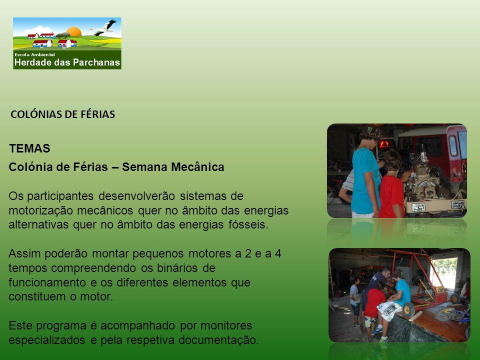 Datas (turnos): O início de cada turno do campo de férias será a partir da primeira semana de Agosto (04/08), no Domingo.