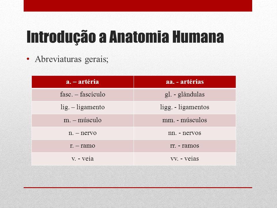 Introdução a Anatomia Humana Abreviaturas gerais; a.