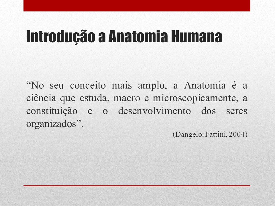 Introdução a Anatomia Humana No seu conceito mais amplo, a Anatomia é a ciência que estuda, macro e microscopicamente, a constituição e o desenvolvimento dos seres organizados.