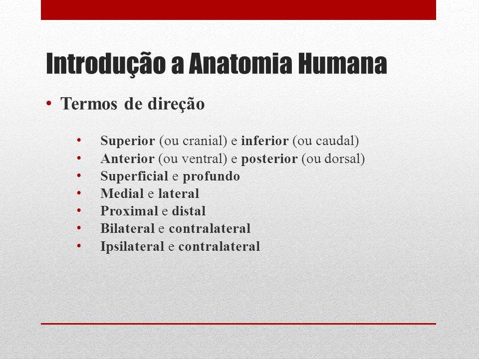 Introdução a Anatomia Humana Termos de direção Superior (ou cranial) e inferior (ou caudal) Anterior (ou ventral) e posterior (ou dorsal) Superficial e profundo Medial e lateral Proximal e distal Bilateral e contralateral Ipsilateral e contralateral