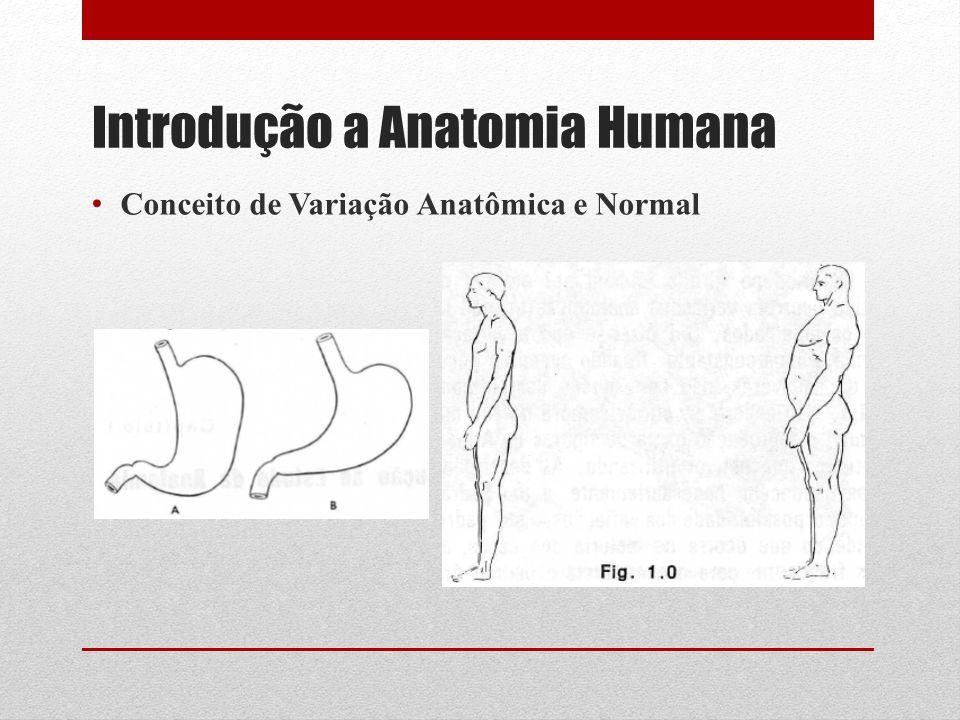 Introdução a Anatomia Humana Conceito de Variação Anatômica e Normal