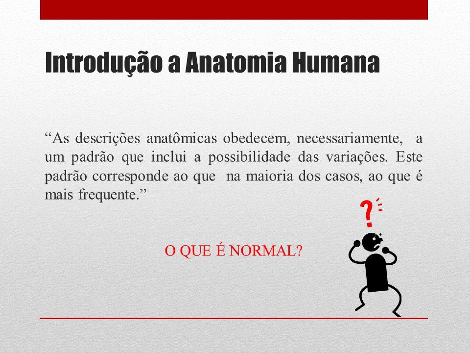 Introdução a Anatomia Humana As descrições anatômicas obedecem, necessariamente, a um padrão que inclui a possibilidade das variações.