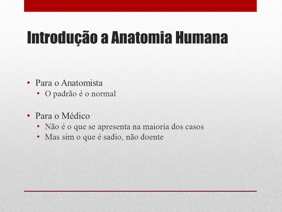 Introdução a Anatomia Humana Para o Anatomista O padrão é o normal Para o Médico Não é o que se apresenta na maioria dos casos Mas sim o que é sadio, não doente