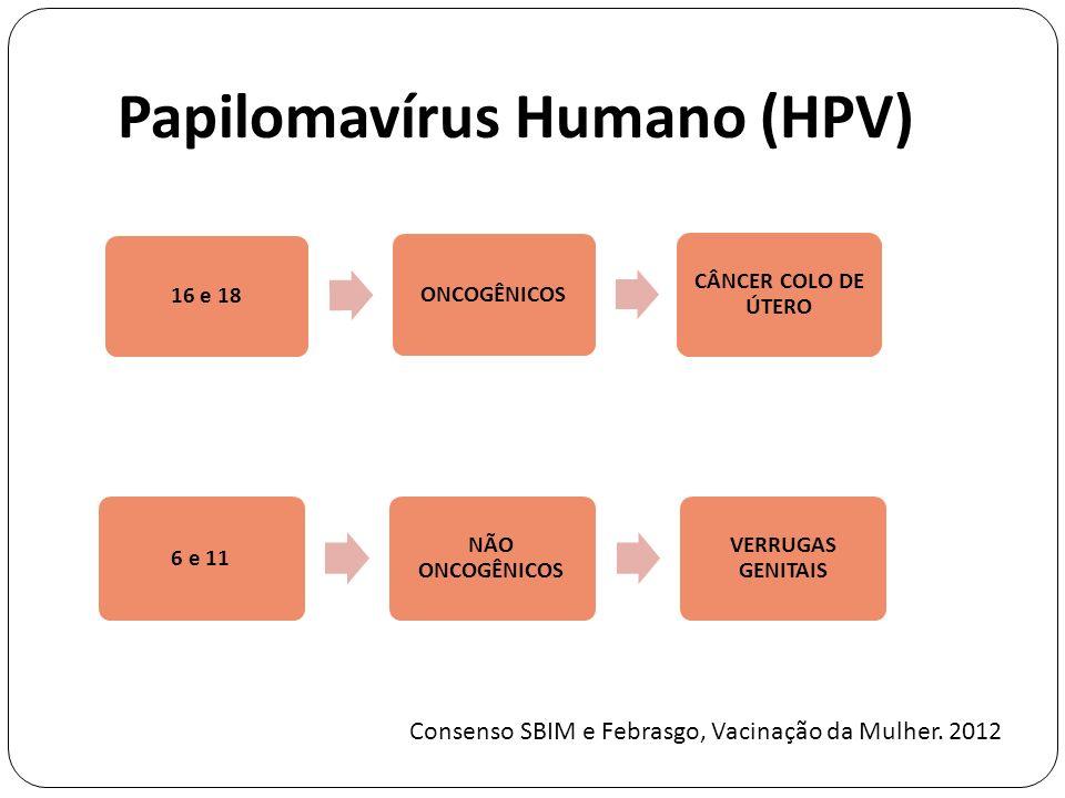 Papilomavírus Humano (HPV) 6 e 11 NÃO ONCOGÊNICOS VERRUGAS GENITAIS 16 e 18ONCOGÊNICOS CÂNCER COLO DE ÚTERO Consenso SBIM e Febrasgo, Vacinação da Mulher.