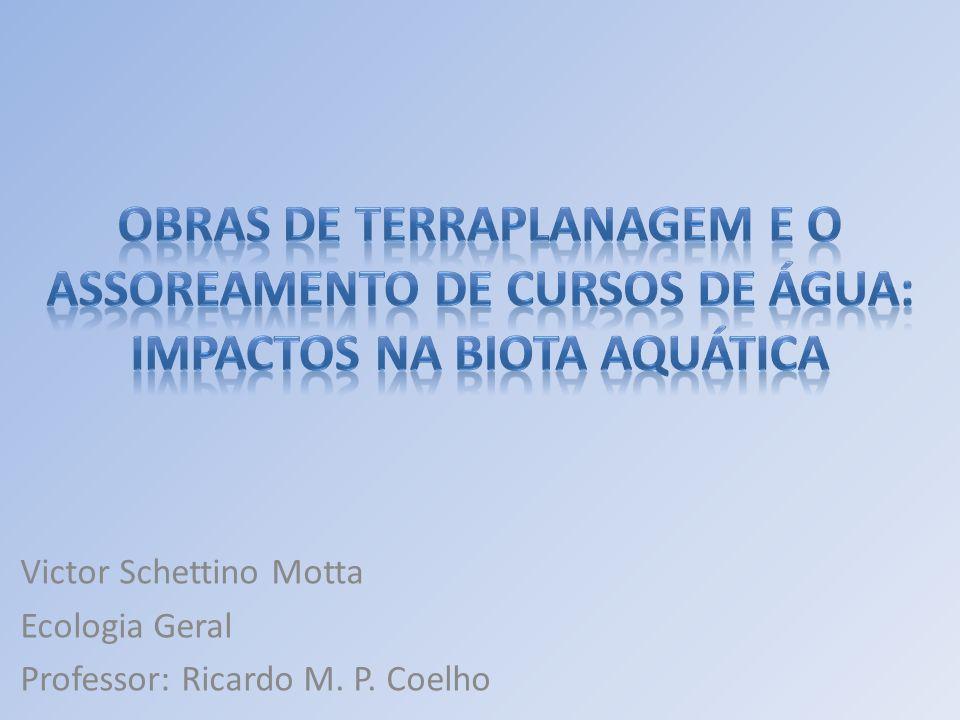 - Aumento da temperatura do sistema - Quebra da estabilidade do ecossistema - Veiculação de poluentes - Veiculação de agentes patogênicos - Perda da zona tampão entre sistema terrestre e aquático -Desorientação dos peixes