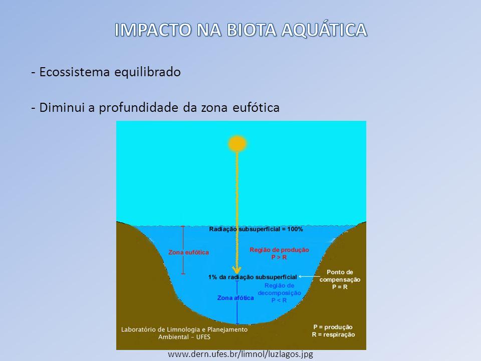 - Ecossistema equilibrado - Diminui a profundidade da zona eufótica www.dern.ufes.br/limnol/luzlagos.jpg