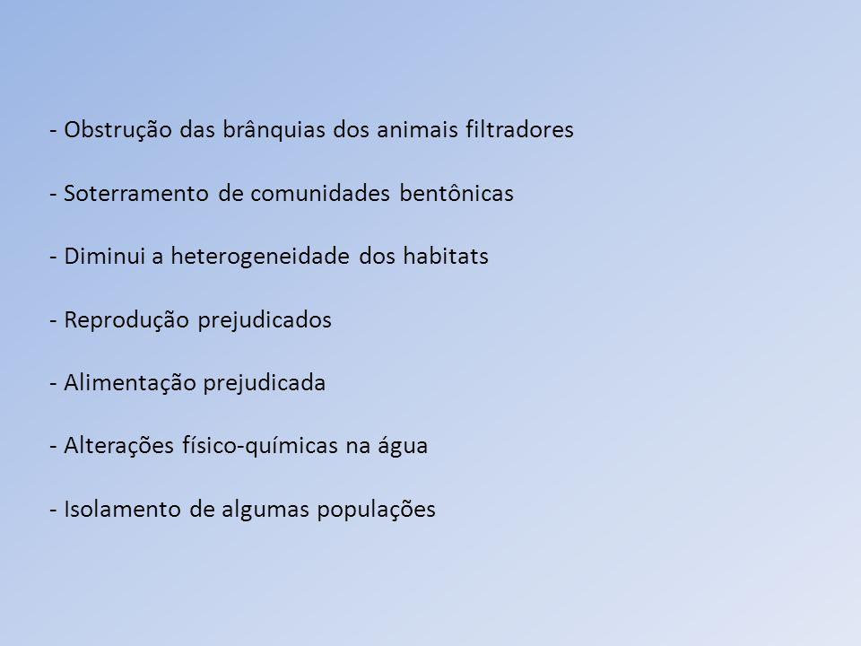 - Obstrução das brânquias dos animais filtradores - Soterramento de comunidades bentônicas - Diminui a heterogeneidade dos habitats - Reprodução preju