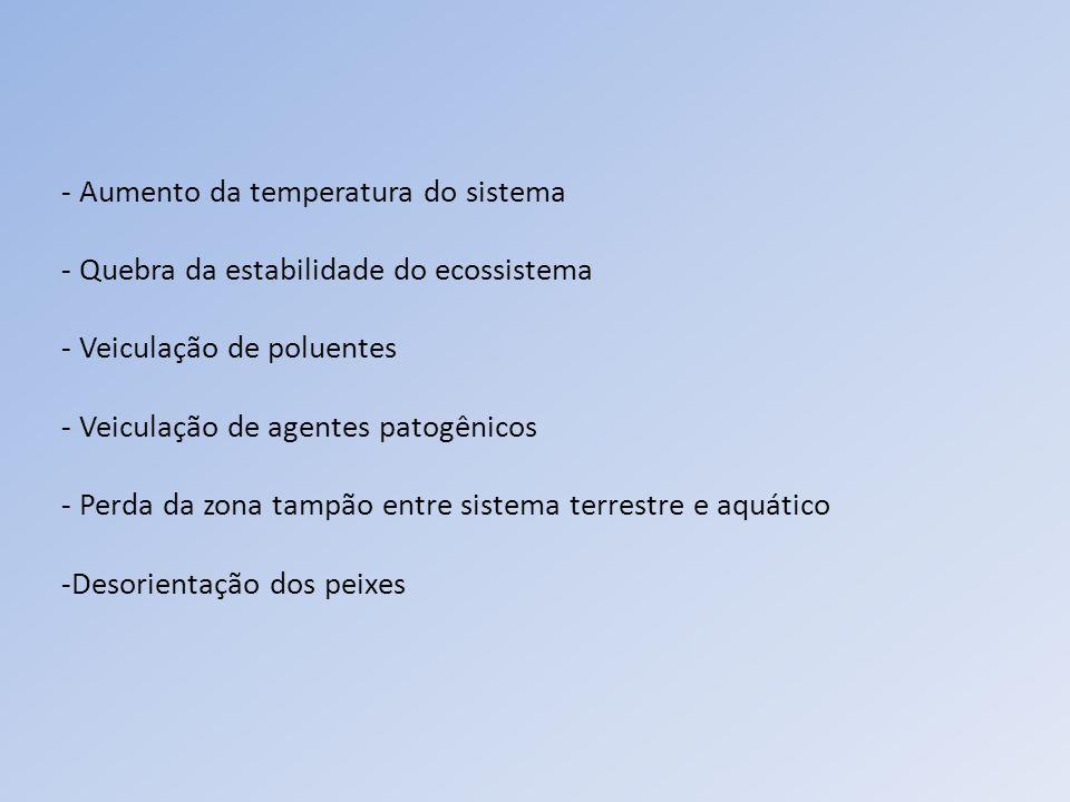 - Aumento da temperatura do sistema - Quebra da estabilidade do ecossistema - Veiculação de poluentes - Veiculação de agentes patogênicos - Perda da z