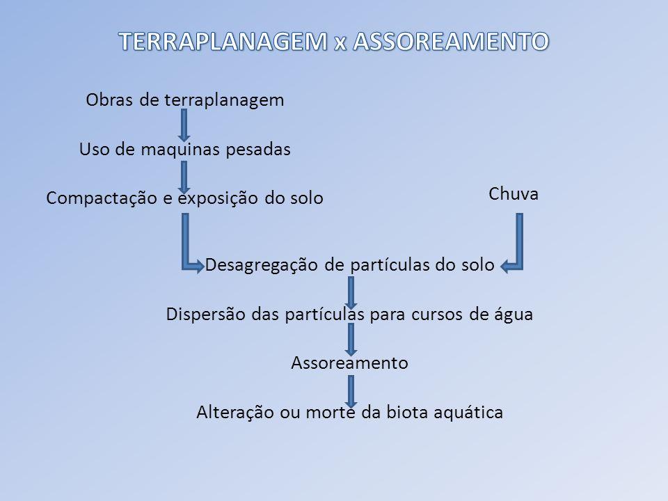 - HAMMES, V.S.Erosão, um indicador de impacto ambiental.