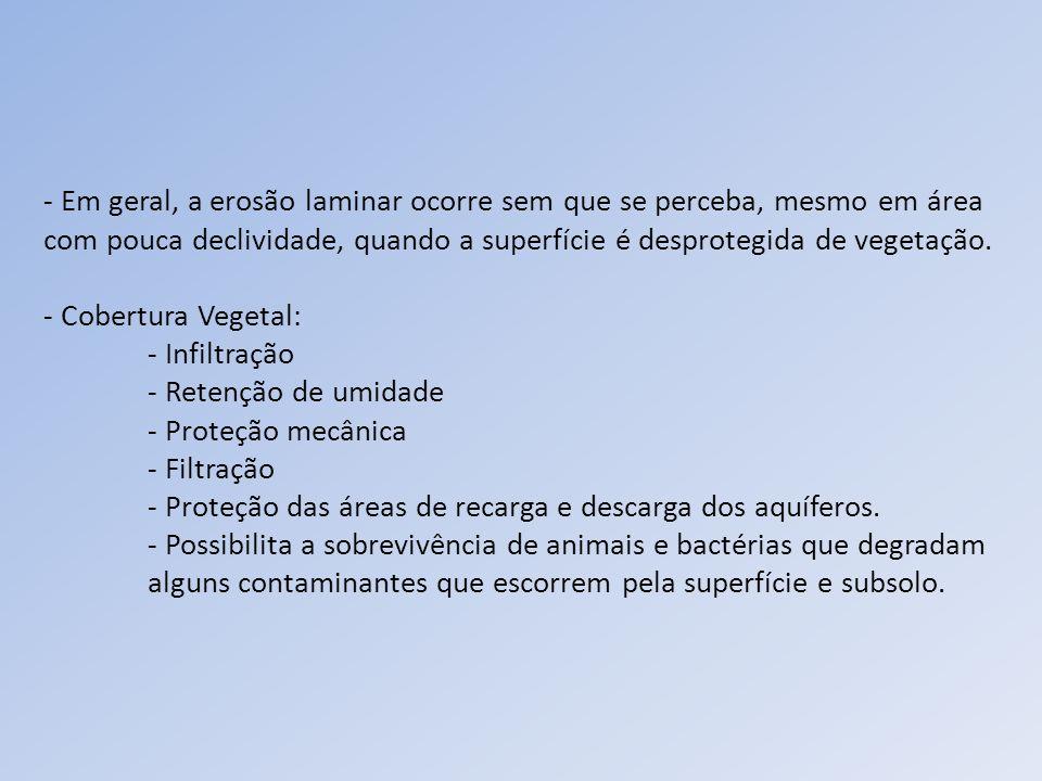 HAMMES, V.S.Erosão, um indicador de impacto ambiental.