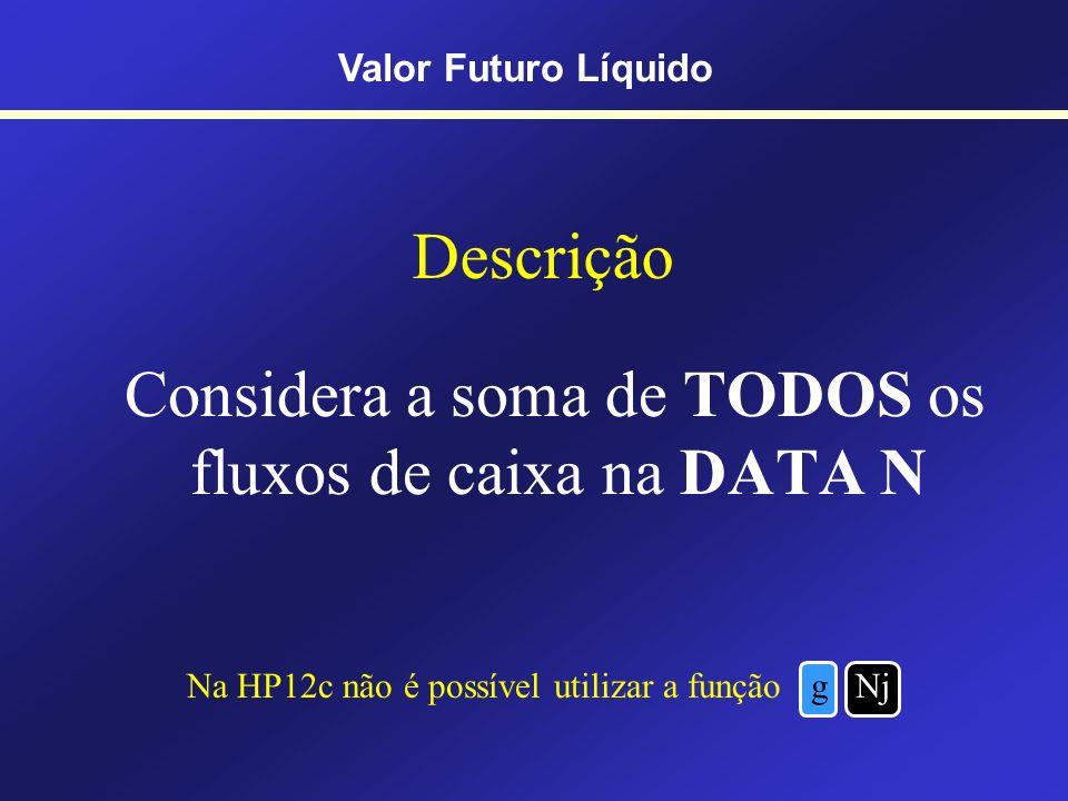 209 Prof. Hubert Chamone Gesser, Dr. Retornar Valor Futuro Líquido - VFL