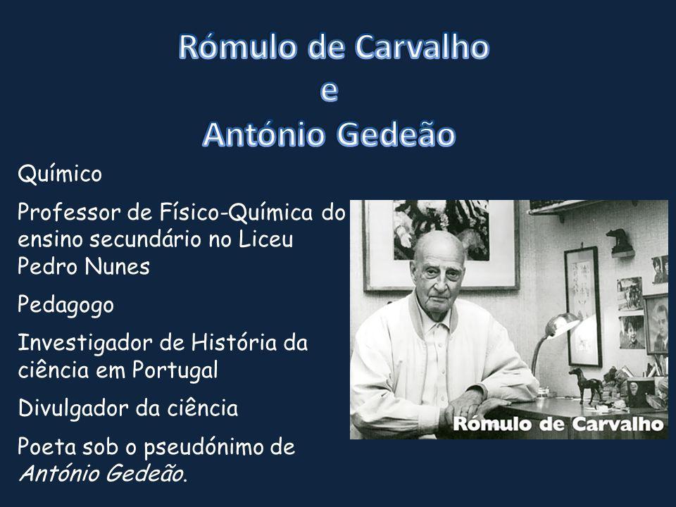 Químico Professor de Físico-Química do ensino secundário no Liceu Pedro Nunes Pedagogo Investigador de História da ciência em Portugal Divulgador da c