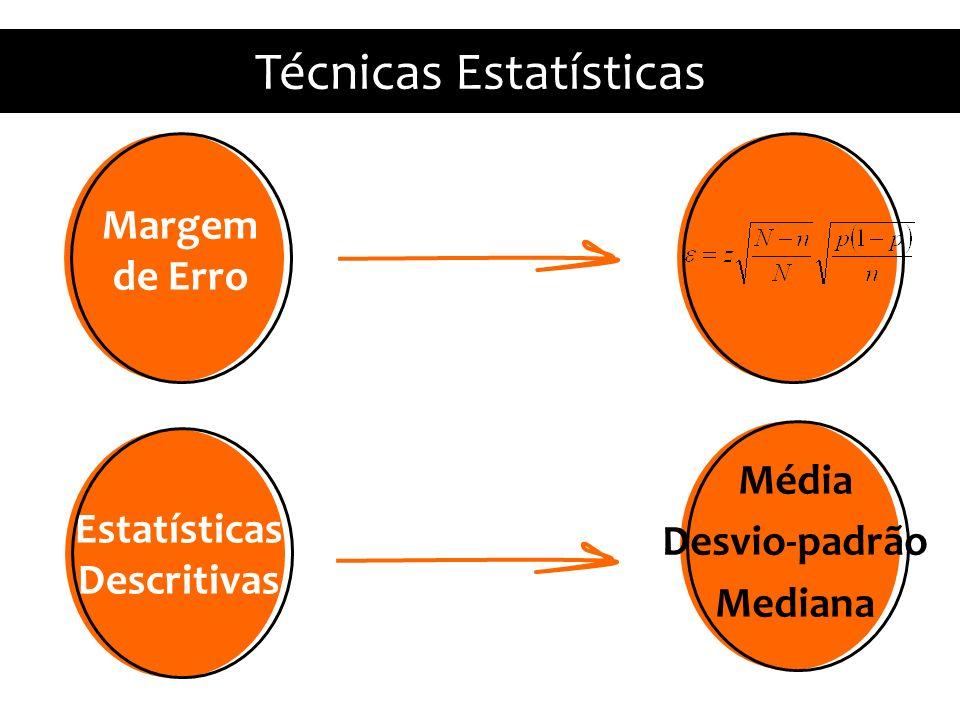 Estatísticas Descritivas Média Desvio-padrão Mediana Técnicas Estatísticas Margem de Erro