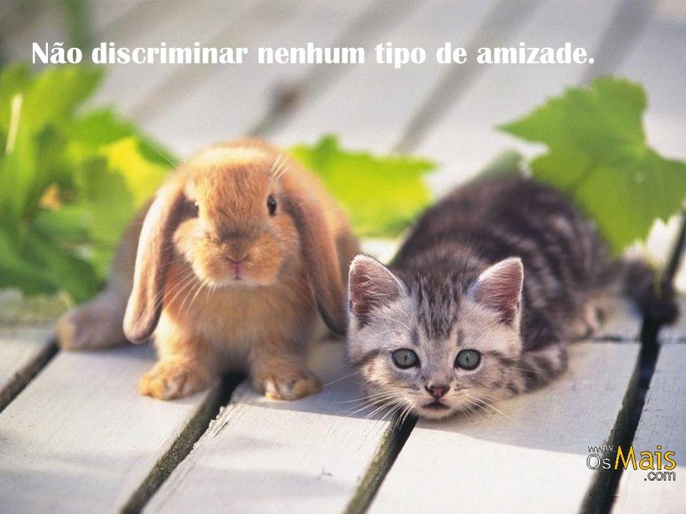 Não discriminar nenhum tipo de amizade.