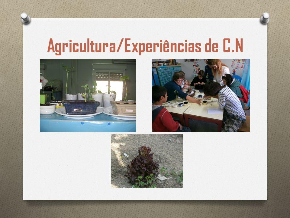 Agricultura/Experiências de C.N