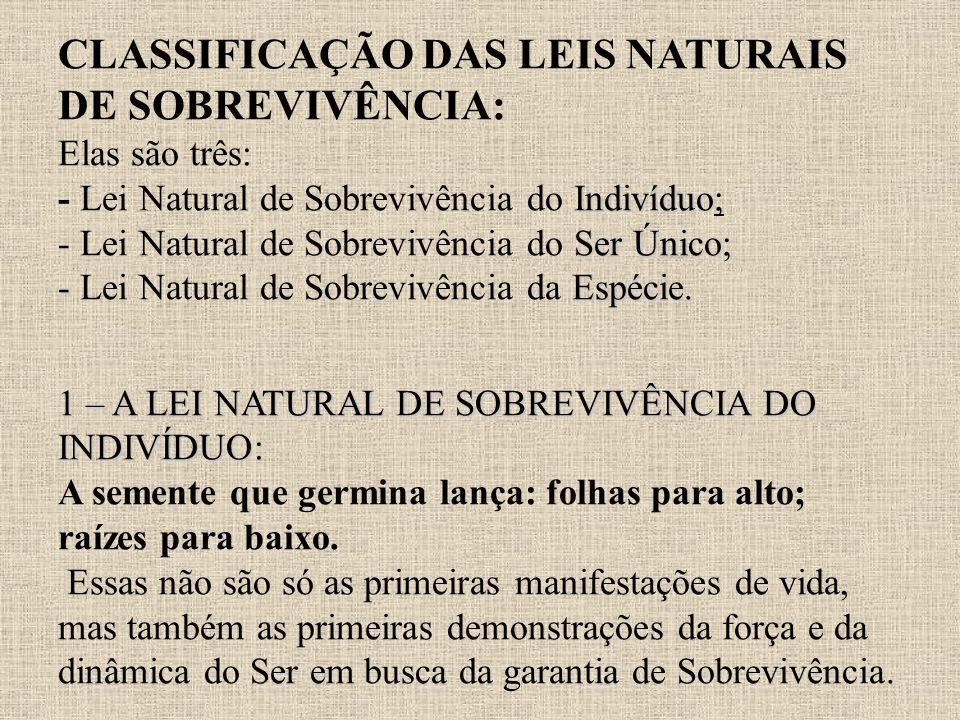 Indivíduo Ser Único; - Espécie. 1 – A LEI NATURAL DE SOBREVIVÊNCIA DO INDIVÍDUO: CLASSIFICAÇÃO DAS LEIS NATURAIS DE SOBREVIVÊNCIA: Elas são três: - Le
