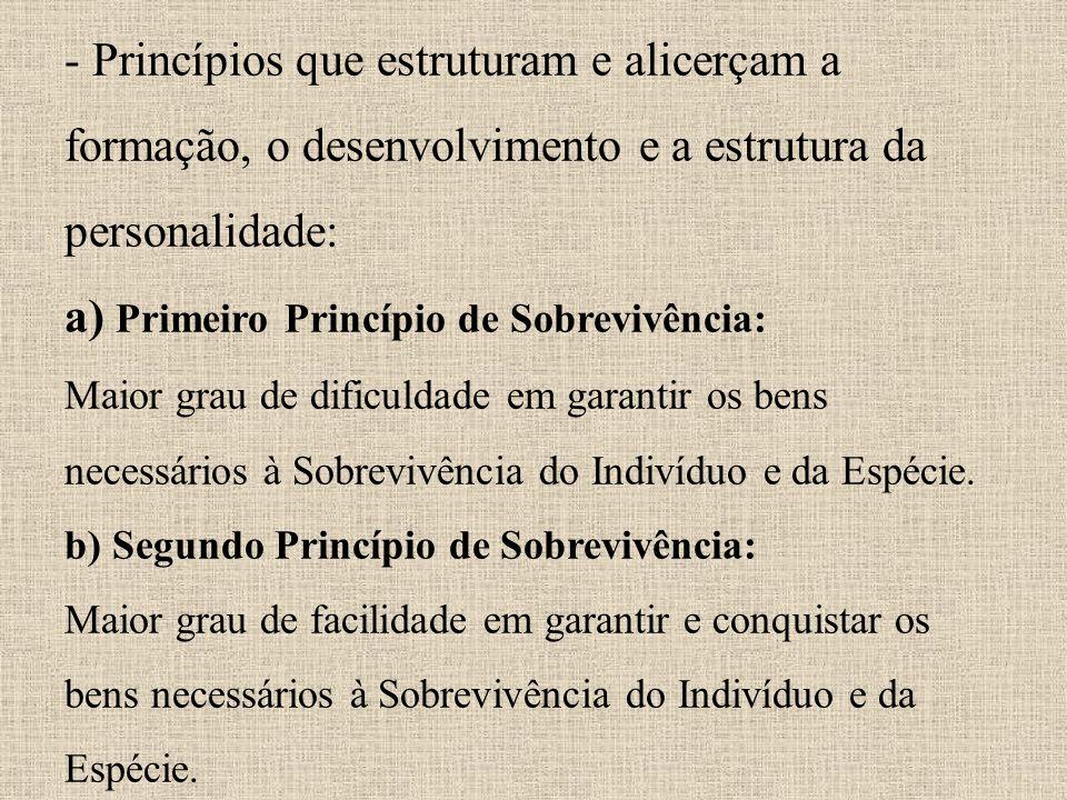 - Princípios que estruturam e alicerçam a formação, o desenvolvimento e a estrutura da personalidade: a) Primeiro Princípio de Sobrevivência: Maior gr