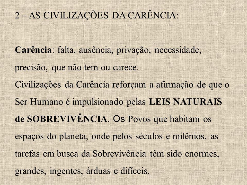 2 – AS CIVILIZAÇÕES DA CARÊNCIA: Carência: falta, ausência, privação, necessidade, precisão, que não tem ou carece. Civilizações da Carência reforçam