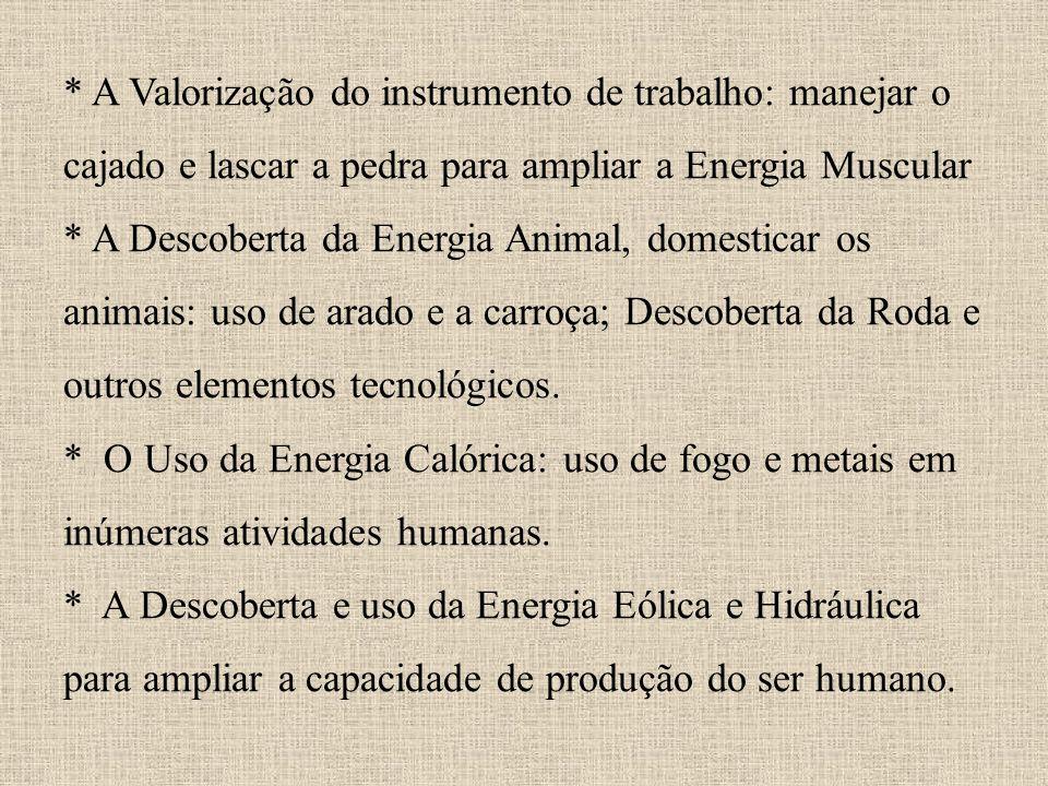 * * A Valorização do instrumento de trabalho: manejar o cajado e lascar a pedra para ampliar a Energia Muscular * A Descoberta da Energia Animal, dome